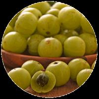Amla - frutti